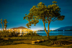 Arbre isolé à l'île Songkhla, Thaïlande de Ko Yo Image stock