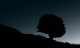 Arbre isolé à l'illustration de nuit Images stock