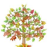 Arbre isolé d'automne de cendre illustration stock