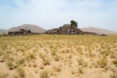 arbre isolé de désert Image libre de droits