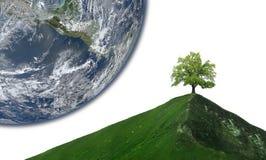 Arbre isolé sur la crête de montagne abstraite photo libre de droits