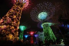 Arbre léger Singapour Photos libres de droits