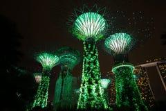 Arbre léger Singapour Image stock