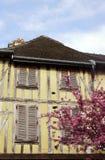 Arbre médiéval d'appartement et d'amande de floraison Photo stock