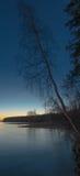 Arbre mort dans le lac Photos stock