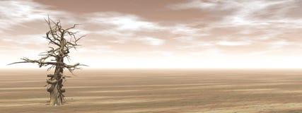 Arbre mort simple dans le désert - 3D rendent Image libre de droits