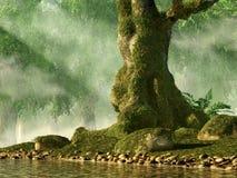 Arbre moussu dans une forêt illustration stock