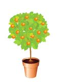 arbre orange illustration libre de droits