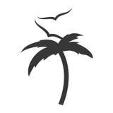 Arbre Palm Beach avec des mouettes Images stock