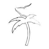 Arbre Palm Beach avec des mouettes Photo libre de droits