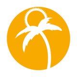 Arbre Palm Beach avec le soleil Photographie stock libre de droits
