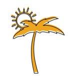 Arbre Palm Beach avec le soleil Photos libres de droits
