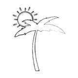 Arbre Palm Beach avec le soleil Images libres de droits