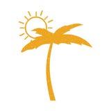 Arbre Palm Beach avec le soleil Photos stock