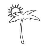Arbre Palm Beach avec le soleil Photo stock