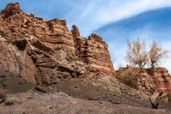 Arbre, roches rouges et ciel avec des nuages Photos stock