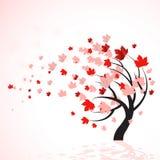 Arbre rouge d'automne Photo stock