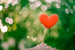 Arbre rouge de coeur Photo libre de droits