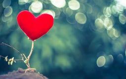 Arbre rouge de coeur Photographie stock libre de droits