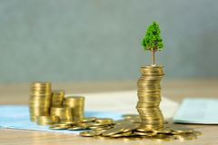 Arbre s'élevant sur la pile des pièces de monnaie et le livre ou le crédit de comptes d'or image stock