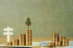 Arbre s'élevant sur la pile des pièces de monnaie et le livre ou le crédit de comptes d'or images stock