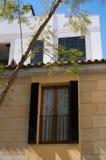 Arbre se reflétant de jacaranda de fenêtre Photos libres de droits