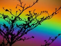 arbre sec de silhouette arrière d'arc-en-ciel en ciel coloré Image stock