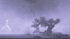 Arbre solitaire, tempête avec des foudres illustration libre de droits