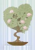 arbre sous forme de coeur Image stock
