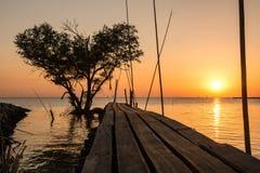Arbre sous forme de coeur avec le pont en bois sur la mer au crépuscule dans Bangpu, en Thaïlande Photographie stock libre de droits