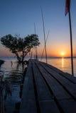 Arbre sous forme de coeur avec le pont en bois sur la mer au crépuscule dans Bangpu, en Thaïlande Images stock