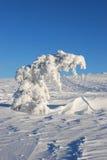 Arbre sous la neige Photographie stock libre de droits