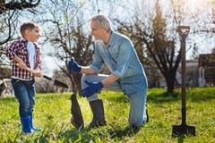 Arbre supérieur enthousiaste d'arrangement de jardinier et d'enfant dans le jardin photos stock