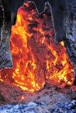 Arbre sur l'incendie Photographie stock