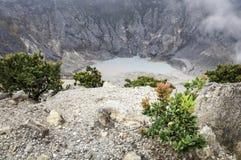 Arbre sur la montagne de volcan Photo libre de droits