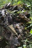 Arbre tombé avec la roche photo stock