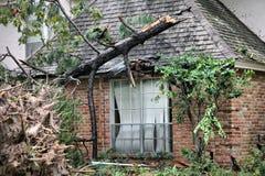 Arbre tombé ruinant le toit Photo libre de droits