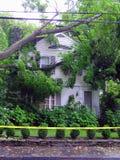 Arbre tombé sur la maison - dommages d'ouragan photo stock