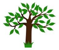 arbre vert Image stock