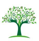 Arbre vert d'icônes d'écologie avec le vecteur de logo de mains Image stock