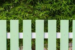 Arbre vert de barrière et de bambou Photo stock