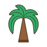 Arbre vert de Palm Beach Photo stock