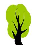 Arbre vert de vecteur Images libres de droits