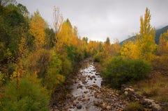 Arbres à côté d'un fleuve avec des couleurs d'automne Photos stock