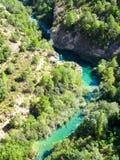 arbres à côté du vert de lit de rivière images libres de droits