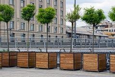 Arbres à feuilles caduques décoratifs dans les lits de fleur carrés en bois sur le trottoir dans la ville Photos stock