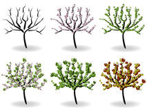 Arbres Images stock