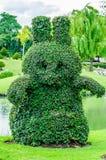 Arbres animaux en parc de Suanluang RAMA 9 Photographie stock