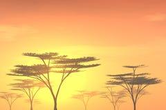 Arbres au coucher du soleil illustration de vecteur