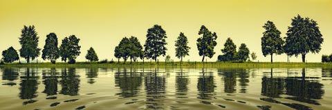 Arbres au lac Images libres de droits